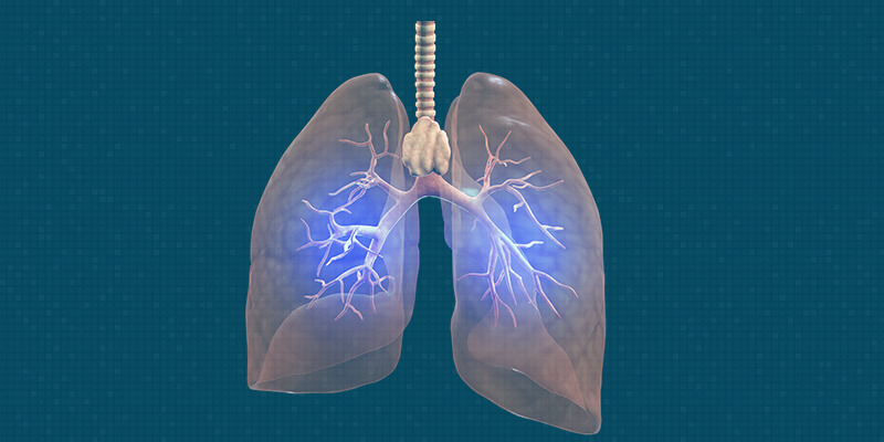 What causes TB in lungs